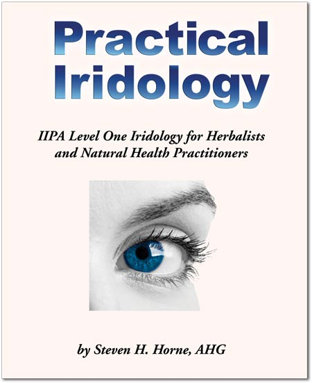 Practical Iridology Course (IIPA Level One) with Manual