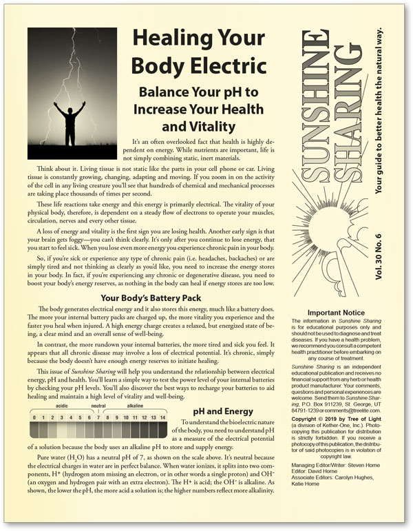 Healing Your Body Electric
