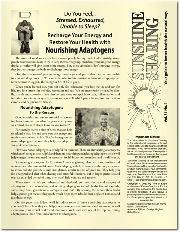 Recharge Your Energy and Restore Your Health with Nourishing Adaptogens